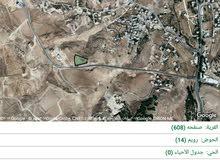 أرض للبيع / محافظة الطفيلة / قرية رويم