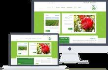موقع ويب كامل متكامل وبمميزات عالمية وباسعار رمزية  برمجة تطبيق اندرويد للموقع مجانية