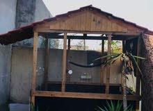 براكه  عصافير بقالينو مساحتها 2.5 ميتر في 1.5 ميتر  والارتفاع 2.5