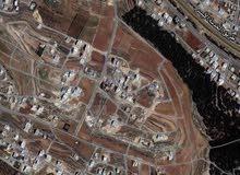 ارض للبيع حوض ام الكندم على شارع 30 موقع مميز سكن خاص لبناء فيلا مساحه 805 متر