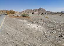 فرصه ارض للبيع في مصفوت 8 علي الشارع العام # QWR