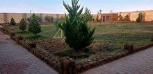 استراحة سوبر لوكس في بوهادي