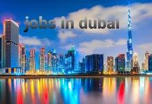 عمل بالامارات دبي