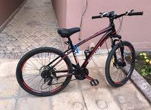 Mountain bike sportex
