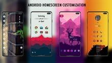 Need an Android Customization!