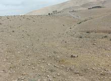 قطعت أرض في قرا بني هاشم الرحيل قرب المركز الصحي وتقع القطعه ع شارعين