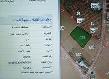 جنوب عمان صوفا تلعة الاسمر 5 دونم 60 ألف