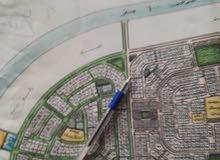 للبيع أرض بمخطط 209 مساحة 875م شارع 40 غرب مباشرة 0541020520