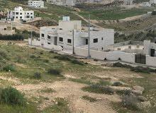 ارض مميزه 4 دنمات   قريبه من دوار ابو نصير الكبير