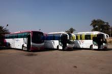 باص مرسيدس 50 راكب للايجار اليومي والرحلات