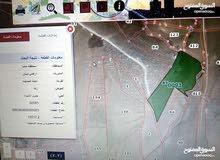 أرض زراعي للبيع  ذيبان-دليلة الحمايده 18 دونم
