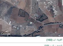 ارض للبيع في مادبا (لب)
