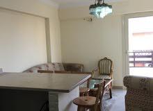 شقة مفروشة بقرية نيس للايجار السنوي