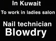 nail technician / blow dry