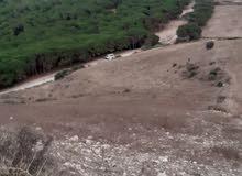 ارض للبيع بنزرت عين داموس