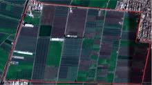 أرض زراعية للبيع مساحة كبيرة