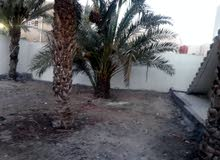 بيت مساحه 600 متر طابو عراقي في ابو الخصيب حمدان