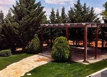 مزرعة مميزة للبيع في اجمل مناطق طريق المطار (ام العمد) , مساحة الارض 10,516م  -  مساحة البناء 120م