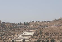 شرق جرش نادره للبيع قطعه ارض مشجره جاهز0776199355