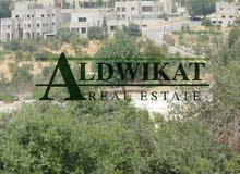 ارض للبيع في منطقة شفا بدران المساحه 1500 م