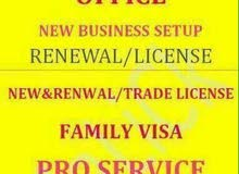 PRO Business Services