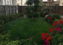 شقة فارغة الايجار 3نوم أرضية مع حديقة ومدخل خاص خلف مخابز براديس جديد لم تسكن
