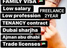 All Pro Services           055-8440139  Freelance Visa 2 Year's  Patnar