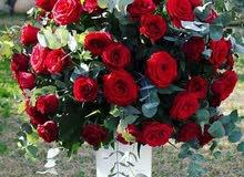 مطلوب منسق زهور. A flower coordinator is required