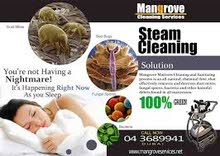 Curtain Steam Cleaning Services