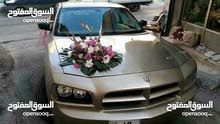 Automatic  2013 Charger for rent