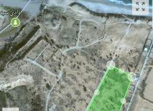 فرصه للمستثمرين ارض فضاء هكتارين و7000م في سيدي بنور تبعد 100م من البحر للبيع