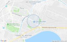 apartment for sale in Alexandria- Smoha