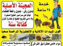 مكافحة جميع الحشرات