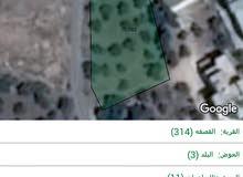 ارض على طريق حريما القصفه... تبعد عن كازيه الزعبي 1900 متر.