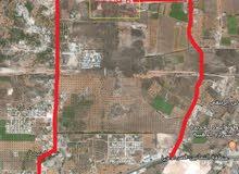 للبيع مزرعة 6 هكتارات علي طريق النهر غنيمة الخمس
