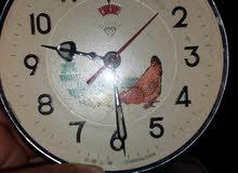 ساعات دجاجة للبيع