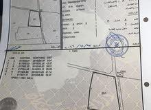 للبيع أرض سكنية الموقع (سور ال حديد) ولاية السيب