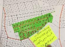 قطعت ارض 10 دونم للبع (للاستثمار)دير الكهف المفرق 300دينار الدونم