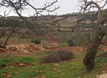 ارض سكنيه وزراعيه للبيع