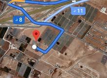 للبيع ارض 602م في الذهيبه الغربيه الجواد العربي شارعين