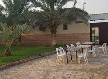 استراحة الريان ديراب في الرياض