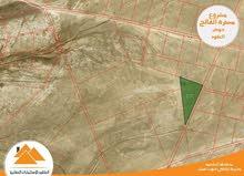 مسترة الفالج اراضي جنوب عمان