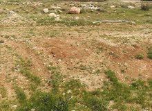 قطعة اارض للبيع في شفا بدران حوض الذهيبة بالقرب من جامعة العلوم التطبيقية
