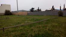 قطعتين ارض وحده مساحتها 400 والتانية 380 متر خلف الجامعة ناصر
