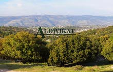 ارض للبيع في ماحص (على الشارع الرئيسي) , مساحة الارض 894م