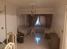 شقة يسموحة بمدينة أسيد المرحلة الأولى غير مجروحة تماما و تطل على حديقة
