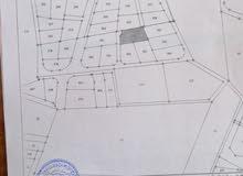 ارض سكنية للبيع قرب طريق عمان التنموي