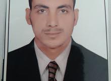 محاسب مصري خبرة