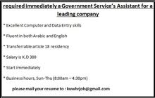 Government Service Assistant