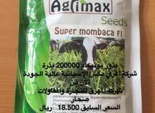بيع البذور الموسمية
